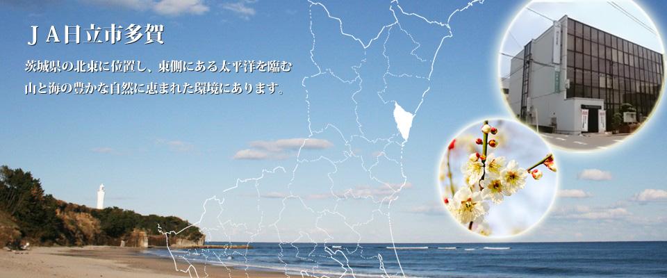 久慈浜海水浴場と古房地公園